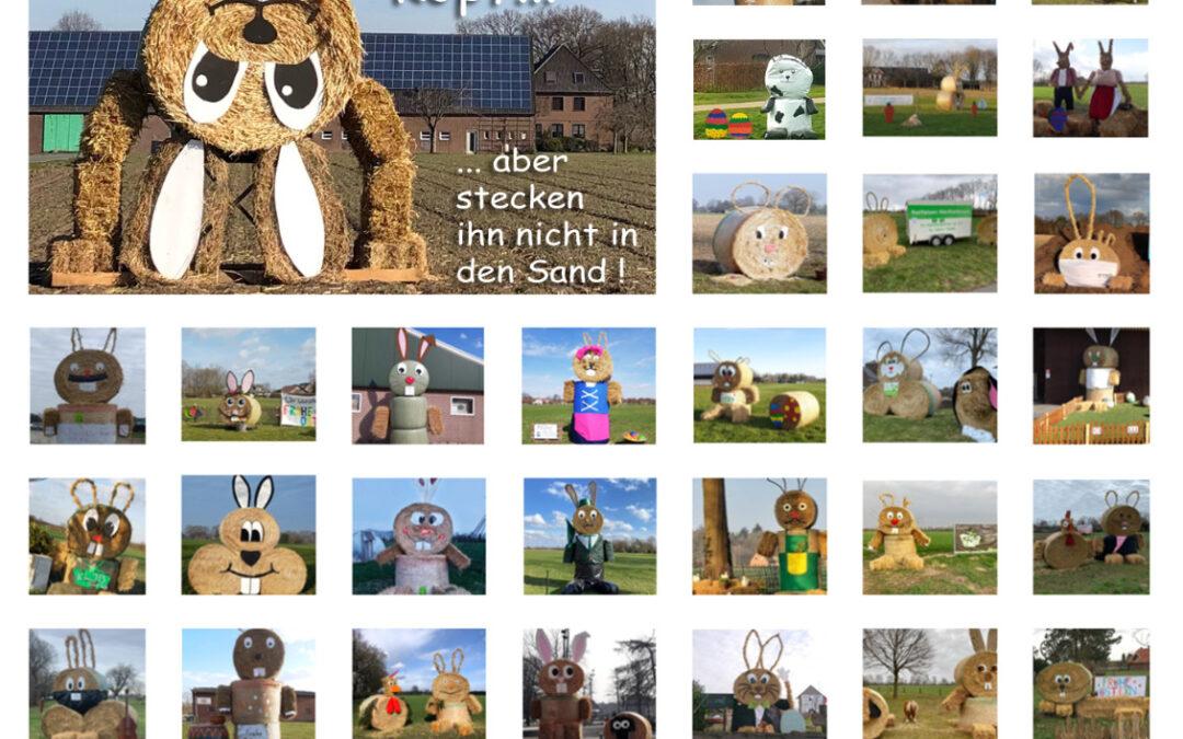 Die Osterhasenaktion der Bocholter Bauern vom 28.03.-09.04.2021 war ein toller Erfolg und hat vielen Besuchern ein Lächeln ins Gesicht gezaubert